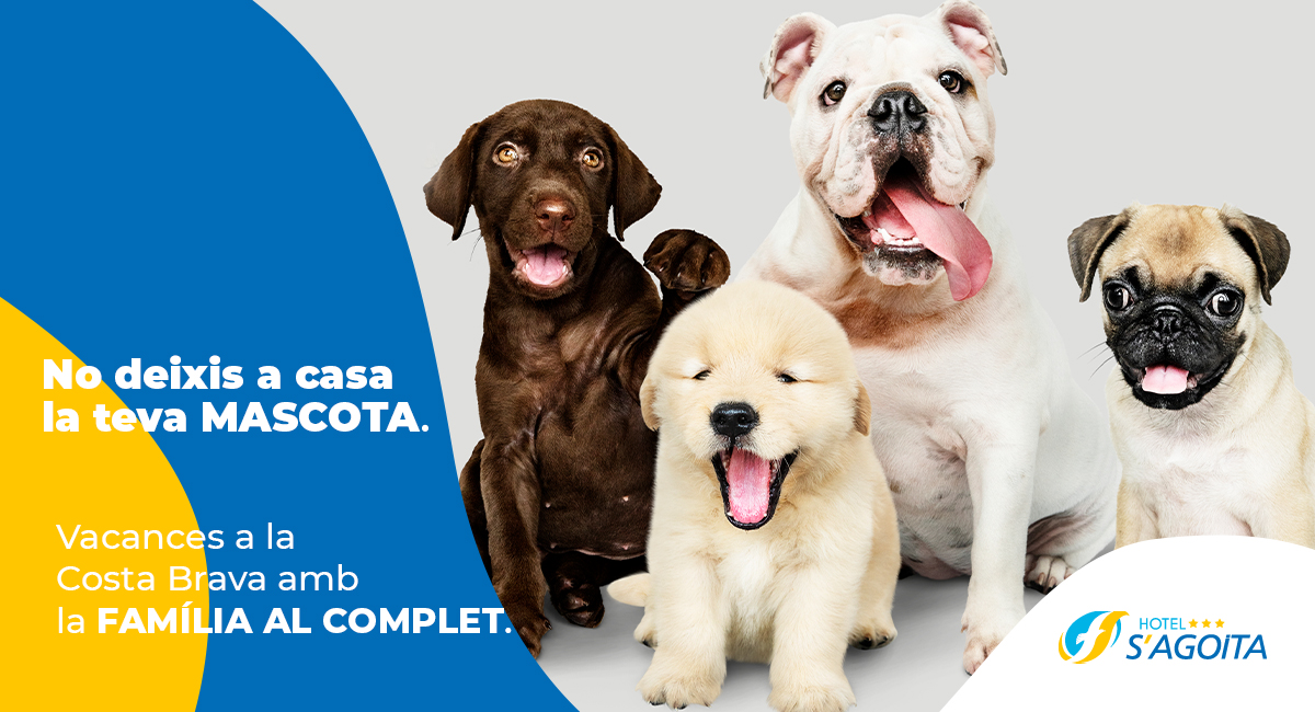 Hotel pet friendly: Las razones para viajar con tu mascota a la Costa Brava